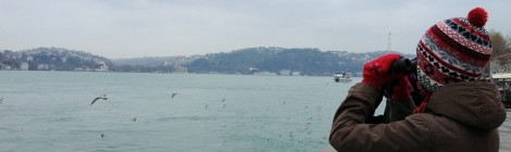 22th December 2012 - Bosphorus Count