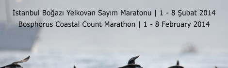 Bosphorus Coastal Count Marathon