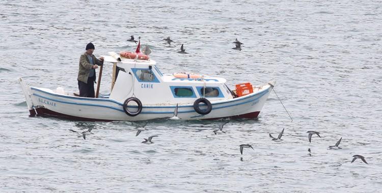 Deniz Kuşları için Hedef Dışı Avlanma Projesi Başlıyor!