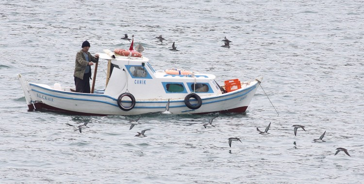 First Seabird By-Catch Project in Turkey