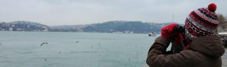 22 Aralık 2012 - İstanbul Boğazı Sayımı